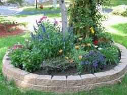 Idee per il giardino la fabbrica delle meraviglie - Idee per aiuole giardino ...