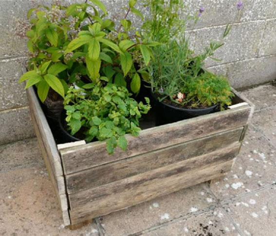 Idee per il giardino la fabbrica delle meraviglie for Idee per il giardino