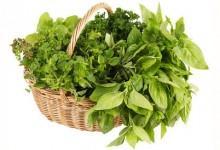 Angolo delle erbe aromatiche