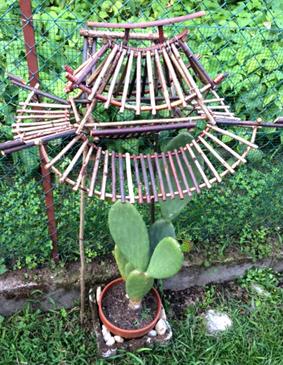 pagoda cactus 002