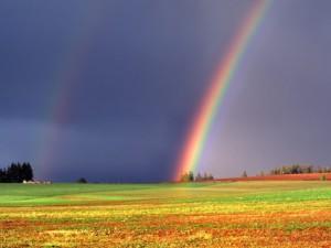 arcobaleno (5)